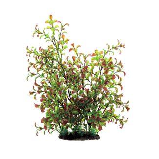 Растения 35 см