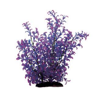 ArtUniq Ludwigia purple 35