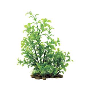 ArtUniq Ludwigia green 38
