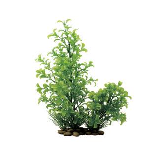 ArtUniq Ludwigia green 30