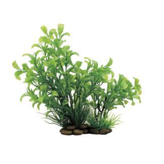 ArtUniq Ludwigia green 20