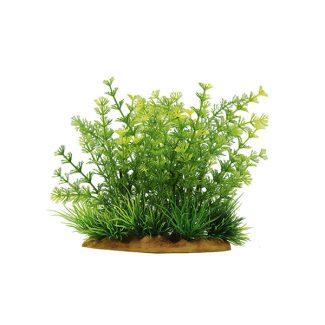 ArtUniq Limnophila sessiliflora 15