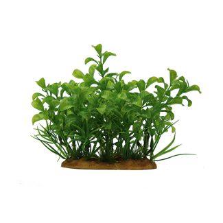 ArtUniq Ludwigia green 15