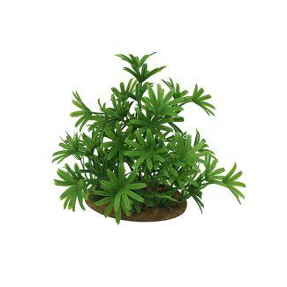 ArtUniq Bambusa green 15