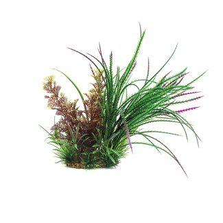 ArtUniq Cabomba furcata & Hygrophila pinnatifida mix 20