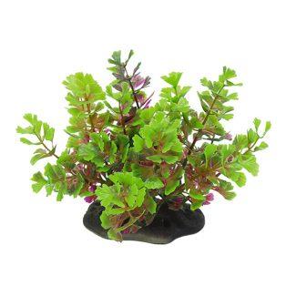 Композиции из растений 10-12 см