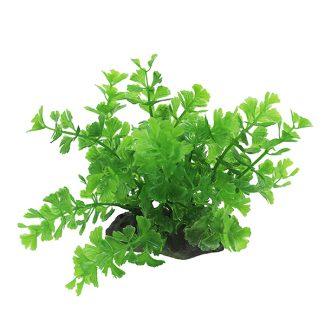 ArtUniq Caryota green 10-12