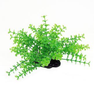 ArtUniq Proserpinaca green 10-12