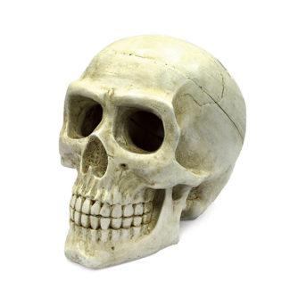ArtUniq Large Skull