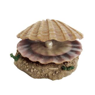 ArtUniq Shell With A Pearl