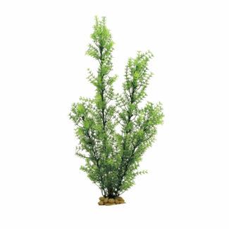 ArtUniq Ceratophyllum green 60
