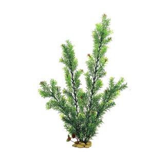 ArtUniq Rotala green 60