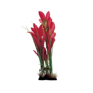 ArtUniq Echinodorus red v2 40