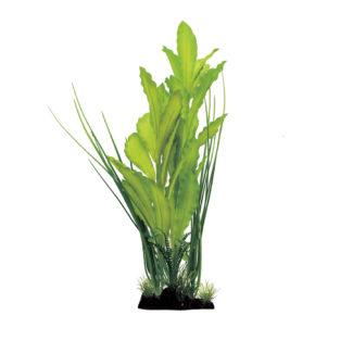 ArtUniq Echinodorus Green 40