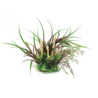 ArtUniq Lagarosiphon madagascariensis Red & bamboo 20