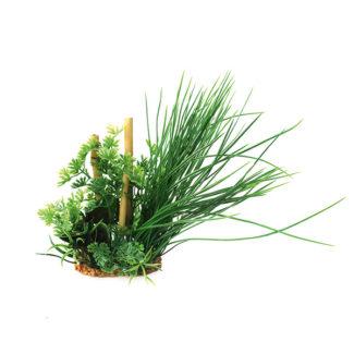 ArtUniq Ranunculus inundatus & bamboo 20