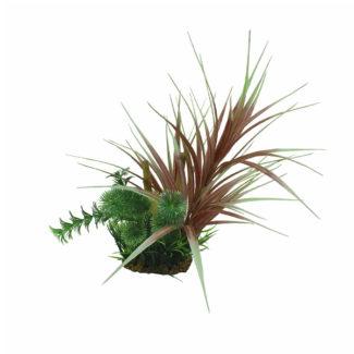ArtUniq Ophiopogon red & bamboo 20