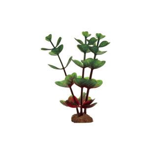 ArtUniq Bacopa red-green Set 6×10