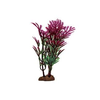 ArtUniq Hottonia purple Set 6×10