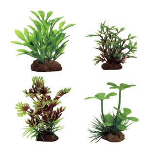 Наборы растений