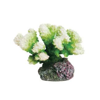 ArtUniq Coral Green